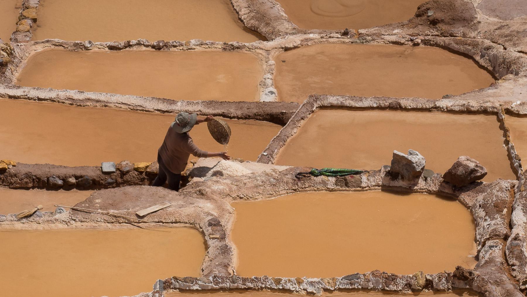 Die Becken werden immer noch zur Salzgewinnung genutzt