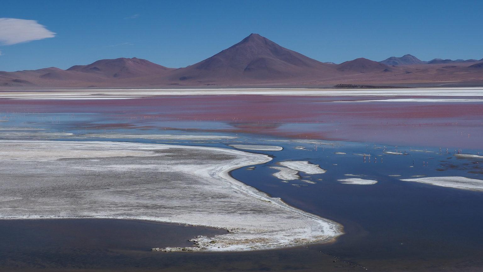 Laguna Colorada, der schönste Salzsee auf der Lagunenroute