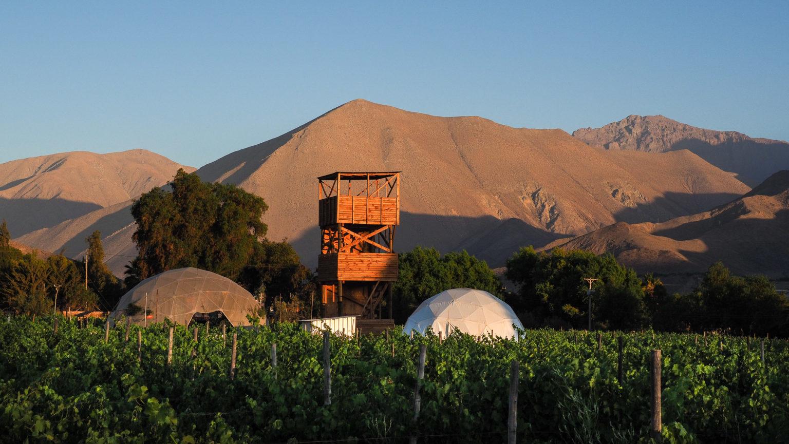 Übernachtung im Weinberg mit Sternenbeobachtung