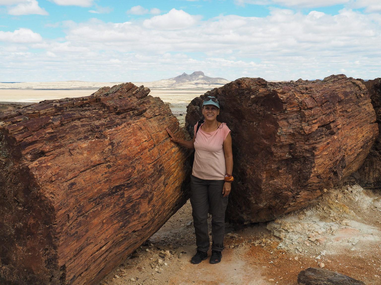 Beeindruckende 150 Mio Jahre alt