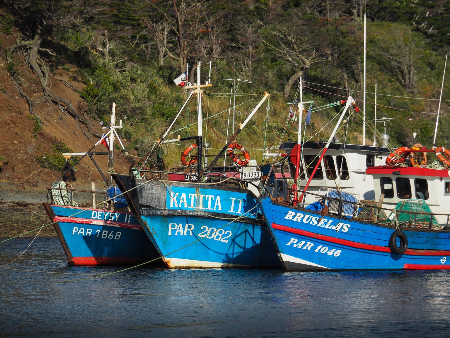 Fischerboote im Hungerhafen, unser südlichster Punkt in Chile