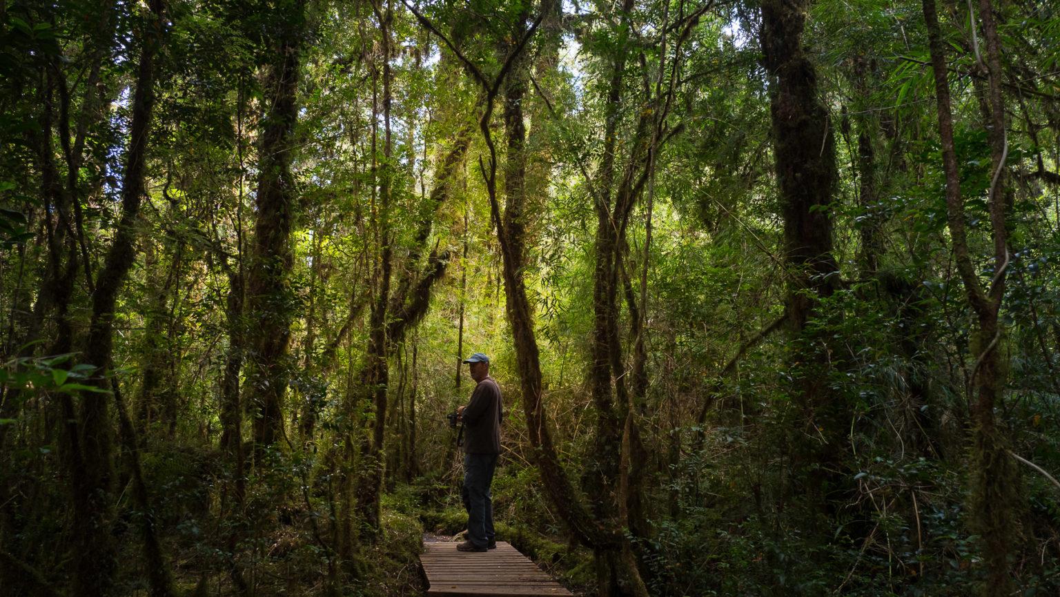 Die Wege sind wunderschön und das Ambiente ist irgendwie märchenhaft.