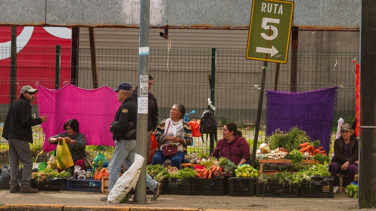 Die Ruta 5 beginnt auf Chiloe und führt uns nach Norden