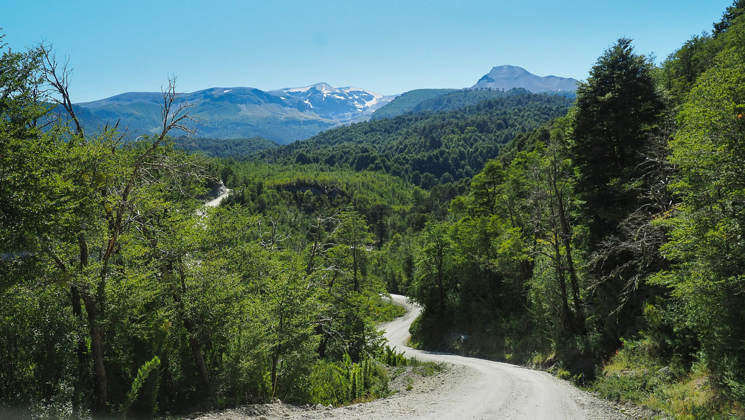 Fahrt zum NP Conguillio