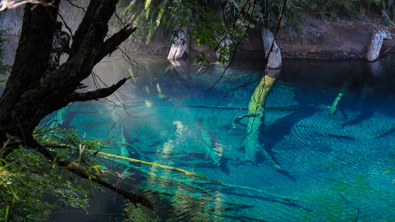 Eine unglaubliche Wasserfarbe